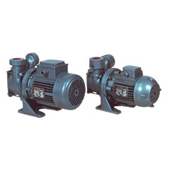 PDTa Horizontal Self-Priming Centrifugal Electric Pump (with liquid ring)